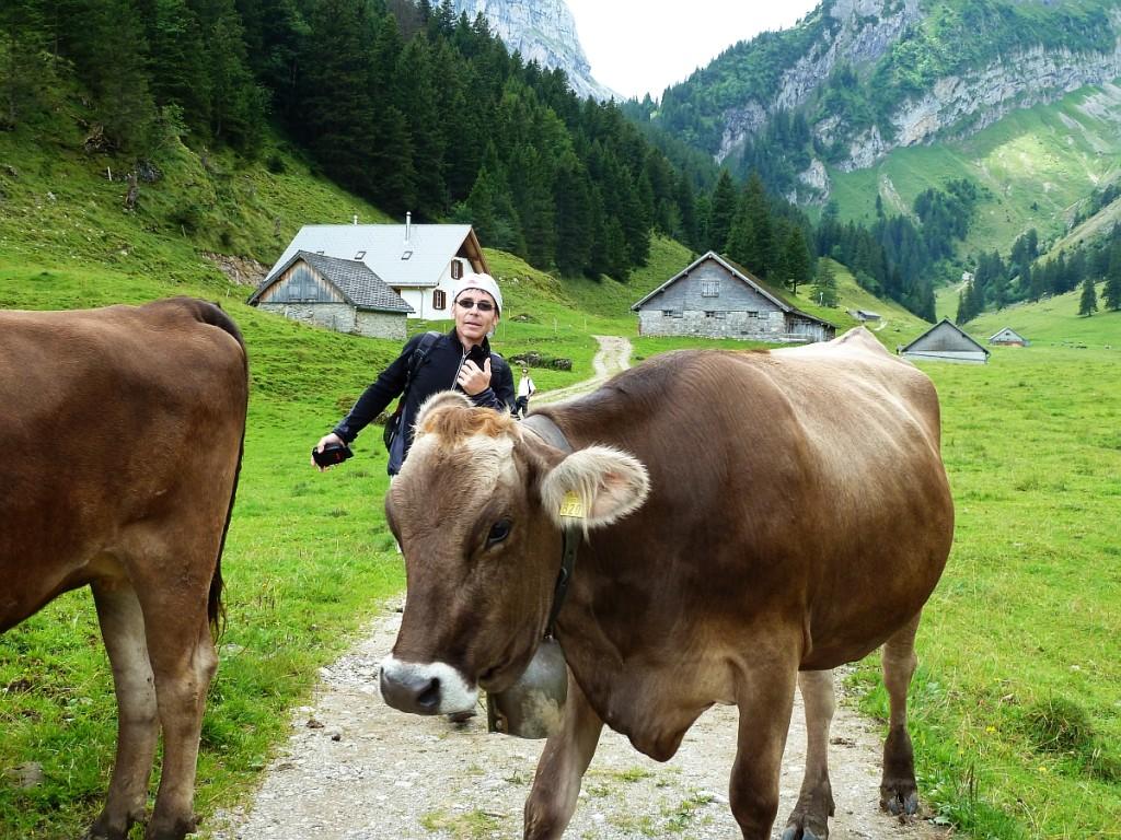 Tiere unserer Bauern